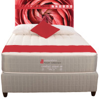 Contour Bed - COMFORT SENSOR Bed Range - new colour - Buy at Beds and More - visit bedsandmore.co.za