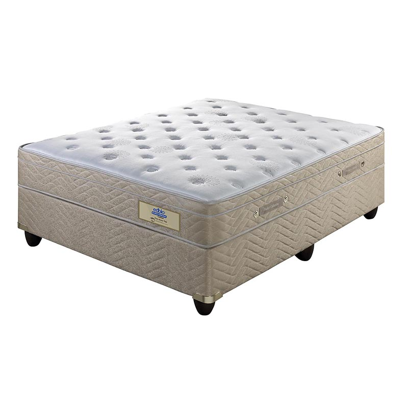 Edblo caliber pocket coil euro top bed beds and more for European beds for sale