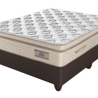 Edblo Energiser Luxury Pamper Top Bed - buy at Lowest Priced at Beds and More Parow Cape Town PRODUCT PRICING Single 91cm Mattress only. R 3 540.00 Base and Mattress. R 4 420.00 ¾ 107cm Mattress only. R 3 880.00 Base and Mattress R 4 840.00 Double 137cm Mattress only. R 4 600.00 Base and Mattress. R 5 750.00 Queen 152cm Mattress only. R 5 080.00 Base and Mattress R 6 340.00 King 182cm Mattress only. R 6 390.00 Base and Mattress R 8 150.00