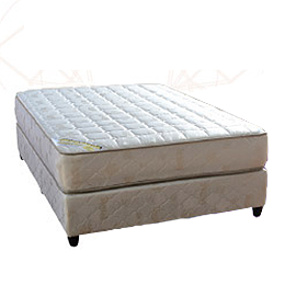 Sleepwell Beds and Mattresses Dream-O-Pedic_Beds and More Parow Cape Town